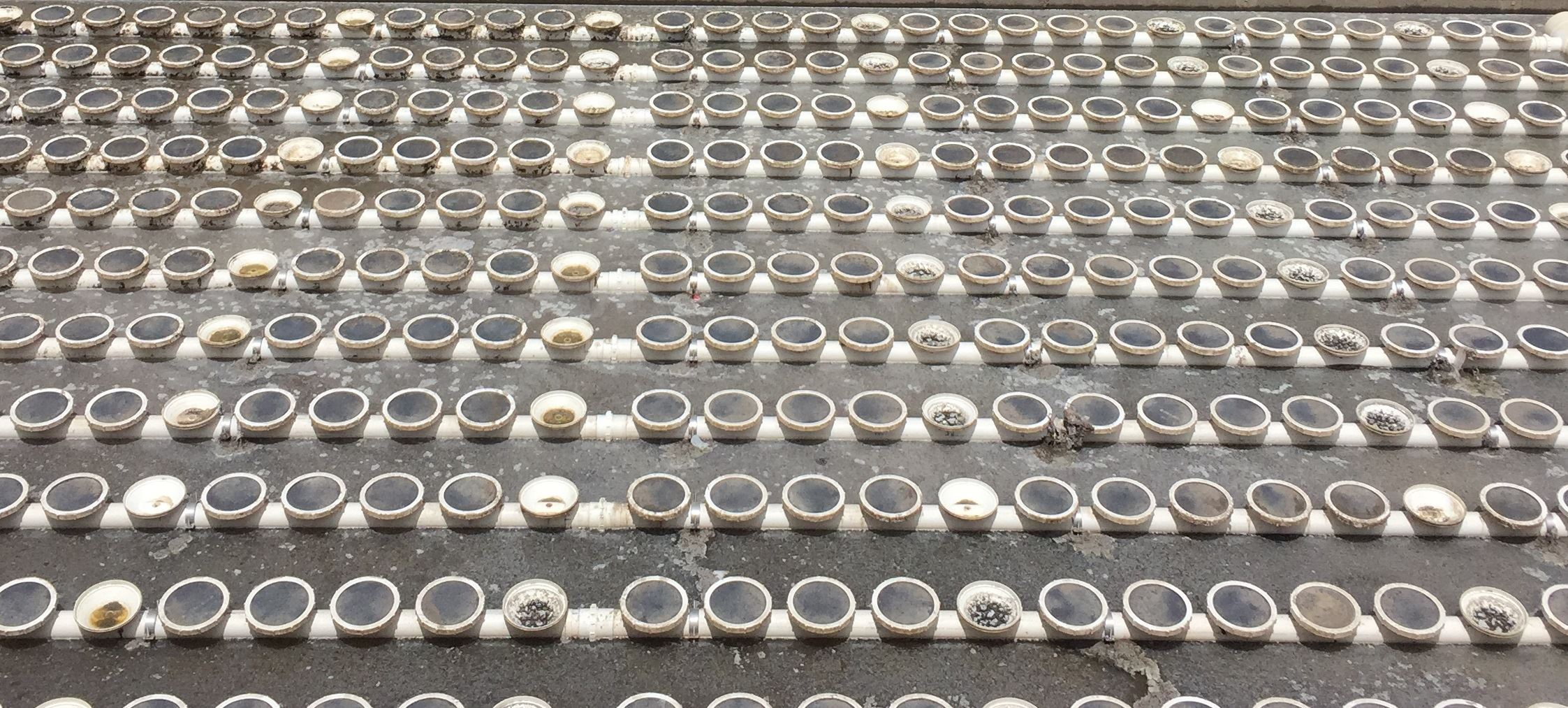 This is a picture of the aeration basin at the City of Blackfoot Wastewater Treatment Plant